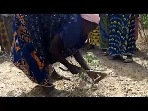 Burkina Faso Women Restoring Degraded Land