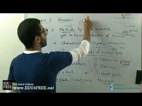 Types of glands - Chapter 6 - Biology - edu4free