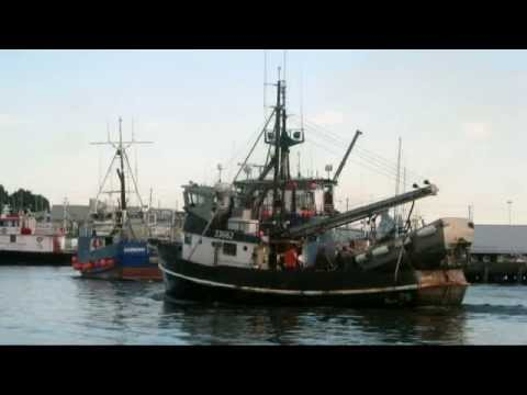 Seine Fishing Boats SE AK   Salty Dog Boating News