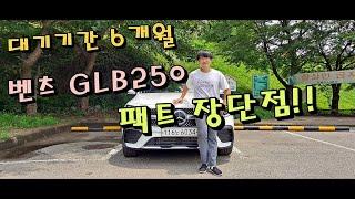 벤츠 GLB250 장단점 핵심 리뷰 l 6개월이나 기다…