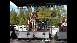 121117 SWFBF#15 - Reverend Raven & The Chain Smokin