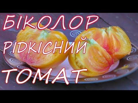 Вкусные томаты.  Биколор - самый вкусный томат!!. Природное земледелие.(укр)