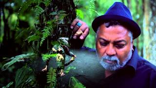 Bluey from Incognito - Hold On (Official Video)