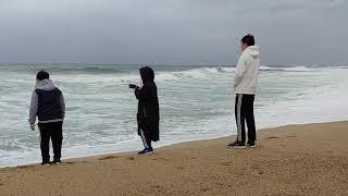 삼형제아빠 청간정콘도 속초ㆍ강릉/ 동해 가족여행 1박2…