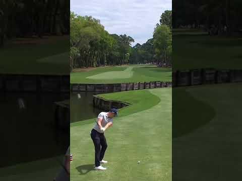 A good golfer always hunts birdies … on the scorecard of course #Shorts