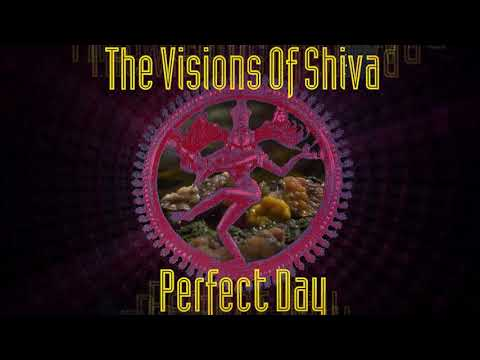 The Visions Of Shiva - Perfect Day [MFS Records] (1992)