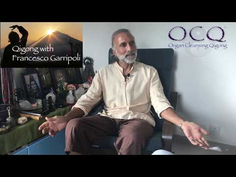 Organ Cleansing Qigong Interview with Francesco Garri Garripoli