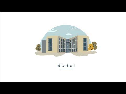 University of Warwick Accommodation - Bluebell
