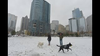 Icy scenes around Charlotte, NC