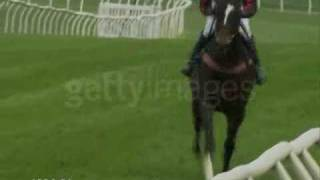 Horse Racing Music Video