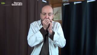 Neil Young Heart Of Gold Harmonica Lesson by George Goodman