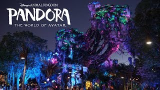 Pandora the World of Avatar Area Background Music Loop Animal Kingdom