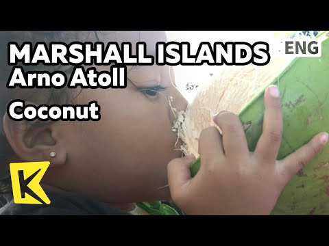 【K】Marshall Islands Travel-Arno Atoll[마셜 여행-아르노]버릴 게 없는 코코넛/Coconut/Cruise/Island/Farm/Copra