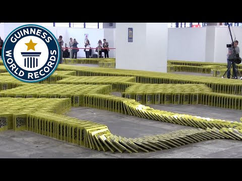 Book Dominoes - Guinness World Records 2016