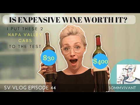 $30 CAB VS. $400 CAB - IS EXPENSIVE WINE REALLY WORTH IT? SV VLOG, ep.44