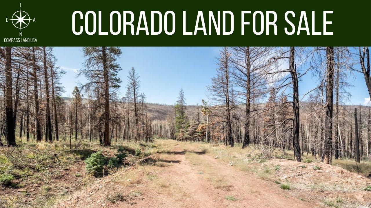 1.17 Acres Land for Sale in Forbes Park, Costilla County Colorado