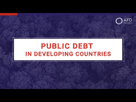Public debt in developing countries with Maxime Terrieux