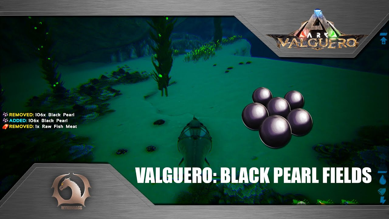 Ark Survival Evolved Black Pearls Fields On Valguero Youtube Where to find and get deino eggs ark: ark survival evolved black pearls fields on valguero