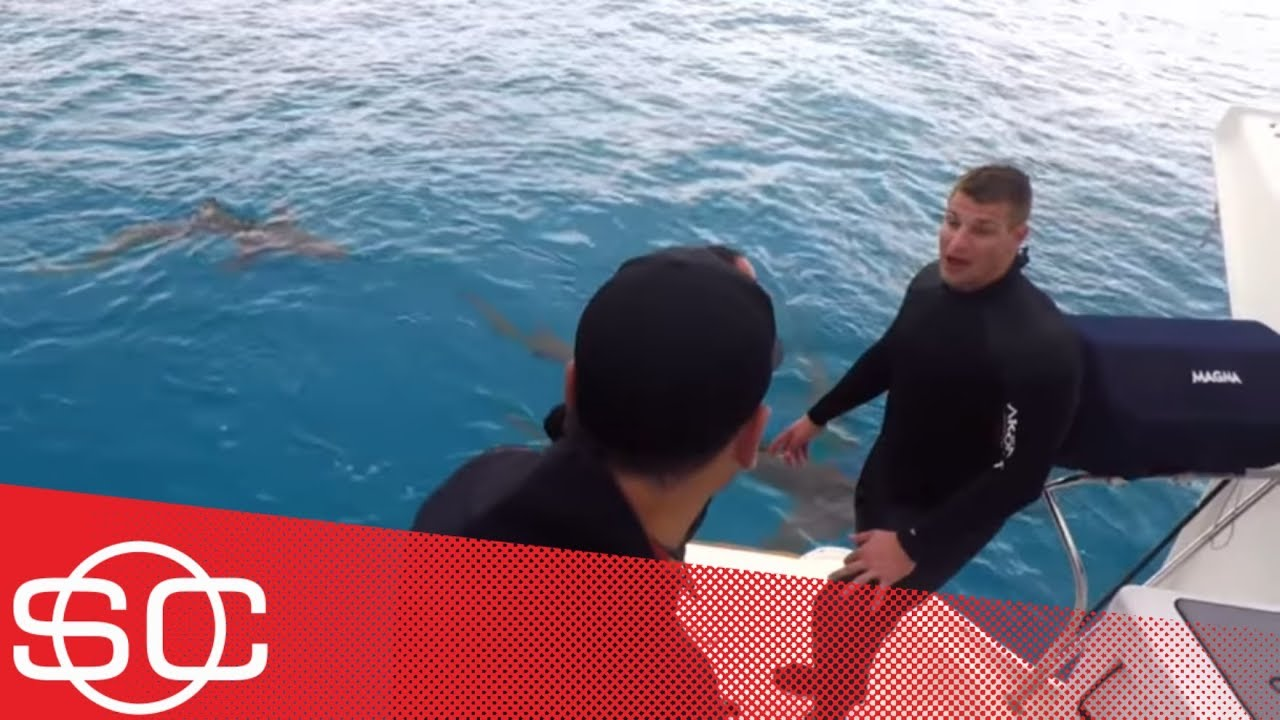 Swimming with sharks ... and Gronk | Hang Time with Sam Alipour | ESPN