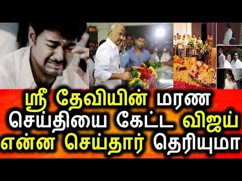 ஸ்ரீ தேவியின் மரண செய்தி கேள்வி பட்ட விஜய் கதறல்|Sri devi|Vijay|breaking news|Today News