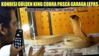 GOLDHI JADI PENYEBAB LEPASNYA GARAGA? MISTERI GARAGA LEPAS PART 2