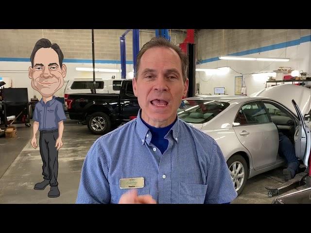 What Is Auto Pain Solvers Expert Advisor?