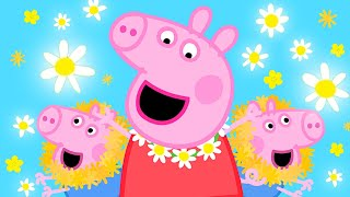 Download lagu Peppa Pig Official Channel 💛 Peppa Pig Makes a Daisy Chain