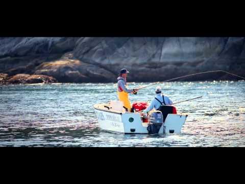 Ole's Hakai Pass Salmon Fishing Lodge BC