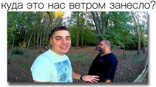 Клад северного Крыма. Как выглядит самая крупная птица России