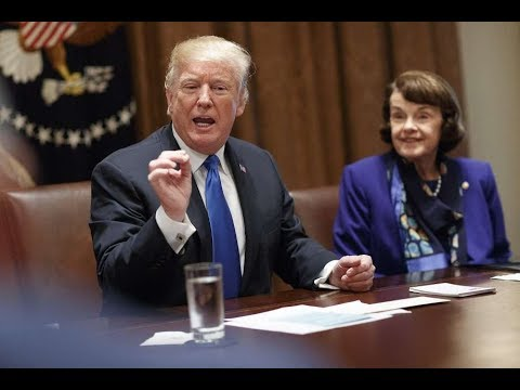 Trump Makes Feinstein Erupt in Glee After Suggesting Assault Weapons Ban Be Included in Bill