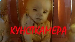 Ужасы кунсткамеры / Спб