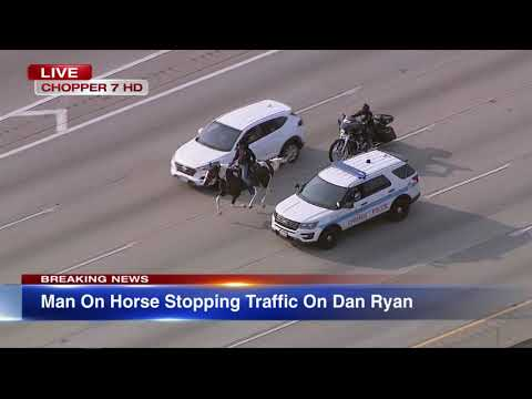 Black Cowboy Gets Arrested For Riding Horse On Chicago Dan Ryan Expwy