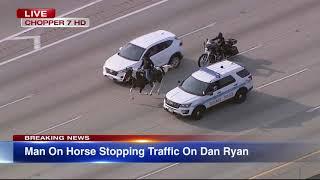 LIVE REPORT: Dreadhead Cowboy rides horse on Dan Ryan Expressway