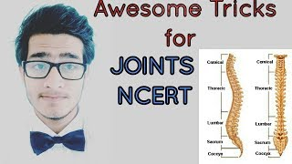 Tricks to learn types and examples of joints NCERT for NEET AIIMS JIPMER