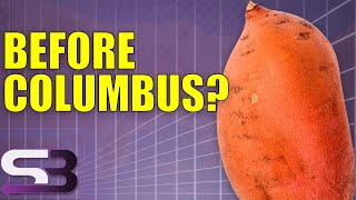 Did Columbus Really Discover America? - Who Discovered America? #1