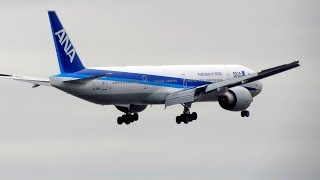 ANA All Nippon Airways Boeing 777-300ER [JA792A] Landing at New York JFK Airport [Full HD]