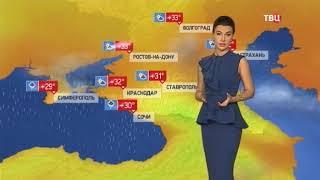 Погода сегодня, завтра, видео прогноз погоды на 3 дня 16.8.2017