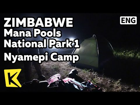 【K】Zimbabwe Travel-[짐바브웨 여행]마나풀스 국립공원 1 나매피 캠프/Mana Pools/Chimutsi River/Nyamepi Camp/Unesco