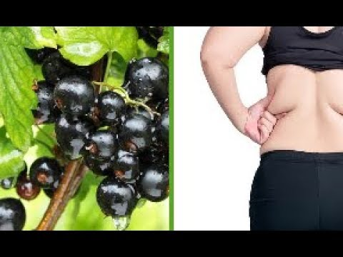 This Blackcurrant Extract Can Burn As Much Fat As 4 Weeks Of Regular Exercise