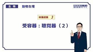 【高校生物】 動物生理3 受容器:聴覚器(2)(27分)