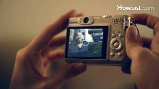 How to Use a Digital Camera