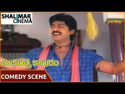 Chilakapacha Kapuram  || Jagapathi Babu &Charan Raj Comedy ||   Jagapathi Babu, Soundarya, Meena