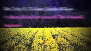 Kuch Mere Dil Ne Kaha (English Translation) - Tere Mere Sapne