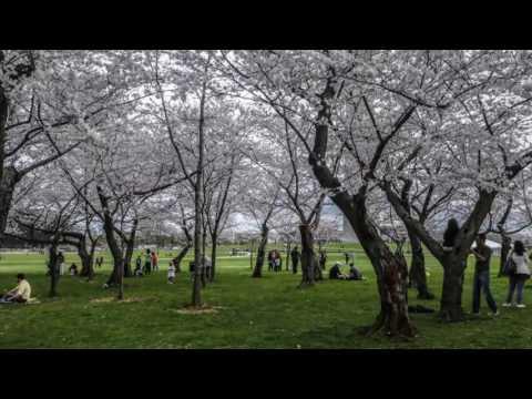 Farmers & Distillers Washington DC Restaraunt: Who Are We