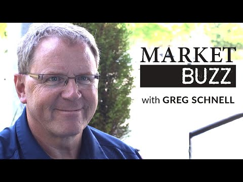Banks - Pillars Of Strength Or Shifting Sands? | Greg Schnell, CMT | Market Buzz (07.08.20)
