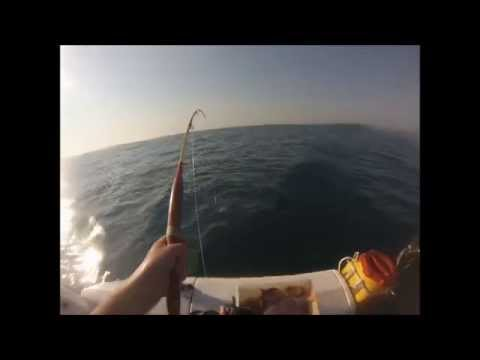 Bottom Fishing South Africa