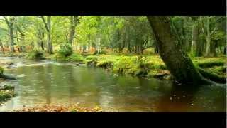 Yiruma - River flows in you (vocal.ruvin) & Rainy Mood