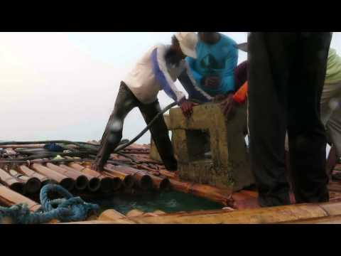Fish Shelter Kabupaten Brebes 2014