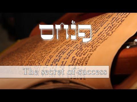 Parashat Pinchas - The secret to success - Rabbi Alon Anava