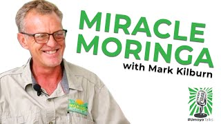 Miracle Moringa with Mark Kilburn #UmoyoTalks Episode 001